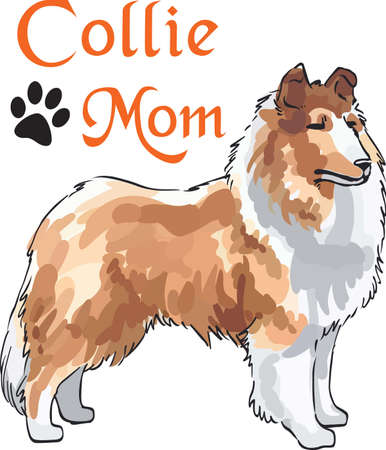 lassie: A beautiful collie will make a great design for a dog lovers project.