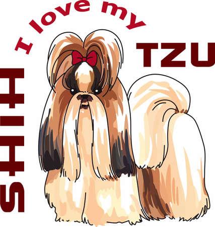 shih tzu: Enjoy a shih tzu dog with you always. Illustration