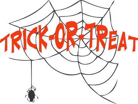 A spider is a fun halloween decoration.