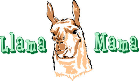 I love my llama.  A cute design from Great Notions.