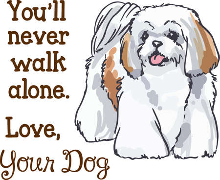 shih tzu: This dog will make a great friend.