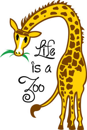 animal time: Giraffes are a fun animal to watch at the zoo.