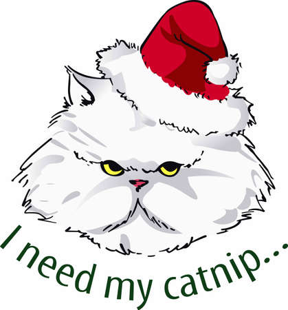 Cheer up your holiday dcor with a grumpy Santa cat.