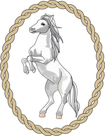 thoroughbred: Horse lovers will want this beautiful animal. Illustration