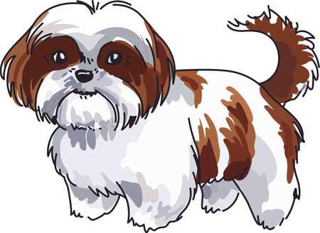 常にこの小さな犬をかわいいシーズーがあります。  イラスト・ベクター素材