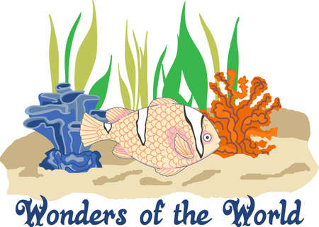 reef fish: Send your little one to dreamland with the wonders of the world.  Perfect for the nursery!