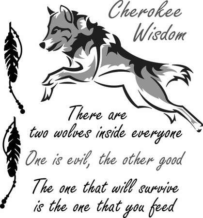De sterkte van de wolf is het pak en de kracht van het pakket is de wolf.