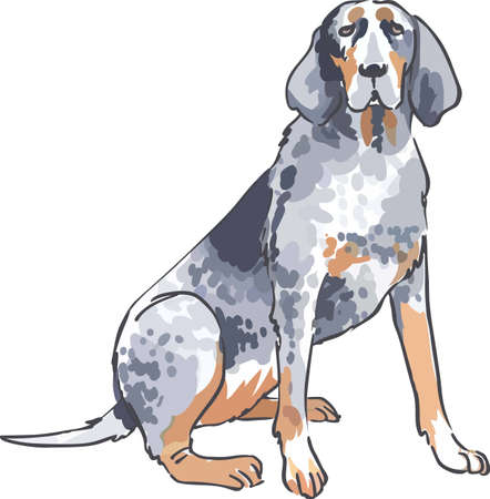 dog walker: This coonhound is a nice design for a dog lover.