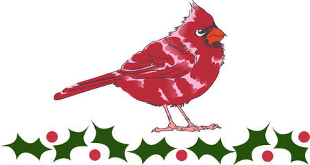 notions: Send holiday cheers with this beautiful Christmas Cardinal. Pick those designs by Great Notions! Illustration