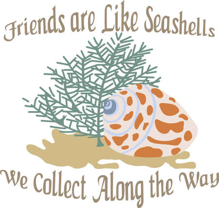 carapace: A beach towel or bag will look wonderful with a seashell decoration.