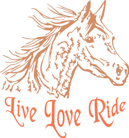 thoroughbred: A beautiful Arabian horse will make a great design for any equestrian.