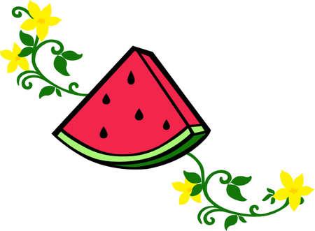 applique: A watermelon applique will make a great picnic design.