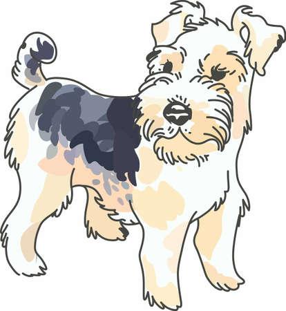 bred: Tener un cabello fox terrier del alambre lindo con usted dondequiera que usted vaya con este perro litte.