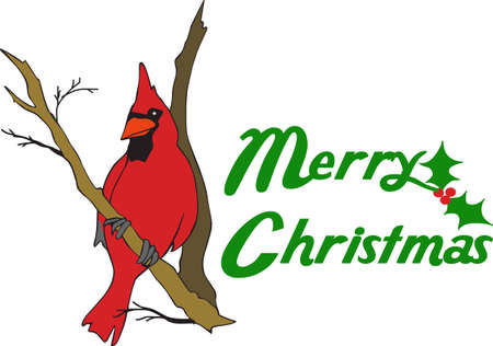 A beautiful cardinal is a wonderful accent for a holiday design.