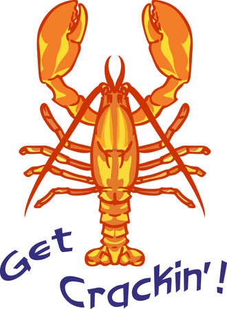 A lobster is great for a beach or food project. 版權商用圖片 - 45449401