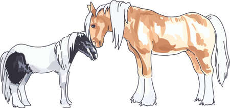horse like: Horse lovers will like an adorable Clydesdale and pony.
