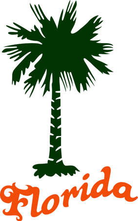 palmetto: Honor the state of Florida with a tropical tree. Illustration