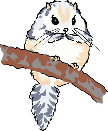 animal limb: A flying squirrel is a wonderful nature design. Illustration