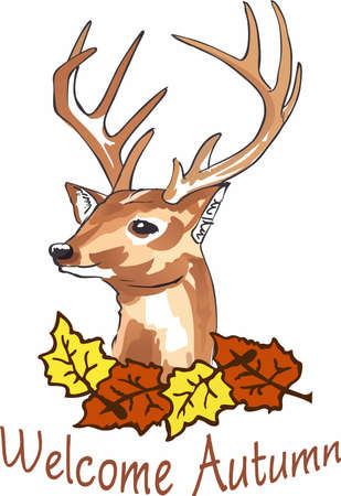 whitetail deer: Welcome the fall season with a beautiful deer head. Illustration