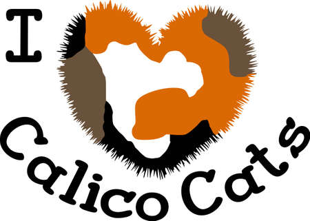 calico: Cat lovers will enjoy this cute calico kitten.