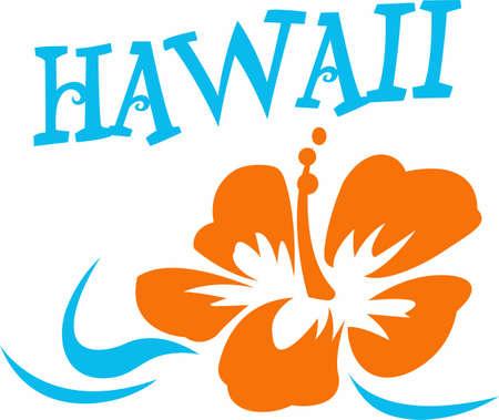 Venga a visitar la isla de Hawaii! Los surfistas y amantes de la playa disfrutar de la isla hawaiana tropical como su destino de viaje. Foto de archivo - 45450235