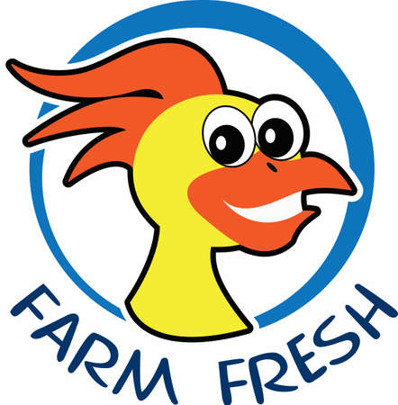nothing: Farm fresh eggs, there is nothing better.  A cute design from Great Notions.