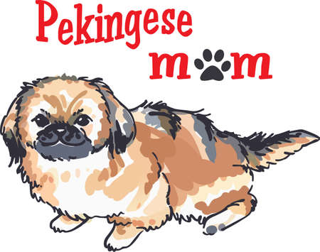 A cute Pekingese puppy will be a great little dog for an animal lover.
