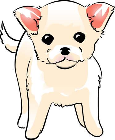 개 애인은이 귀여운 강아지를 원할 것입니다.