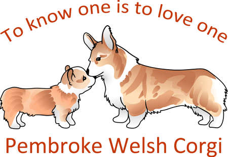 pembroke: You will love these cute Corgis just like the Queen of England. Illustration