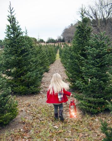 Rear view of little girl walking along fir tree alley holding lantern. Girl wearing red coat walking in winter