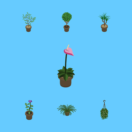 Isometric Plant Set Of Flower, Fern, Houseplant And Other Vector Objects. Also Includes Plant, Blossom, Houseplant Elements. Illustration