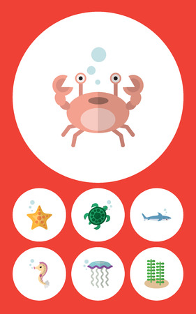 Flat Icon Marine Set Of Cancer, Shark, Medusa And Other Vector Objects. Also Includes Sea, Hippocampus, Starfish Elements.