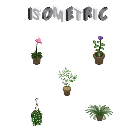 Isometric Plant Set Of Fern, Flower, Plant And Other Vector Objects. Also Includes Plant, Flowerpot, Hanging Elements.