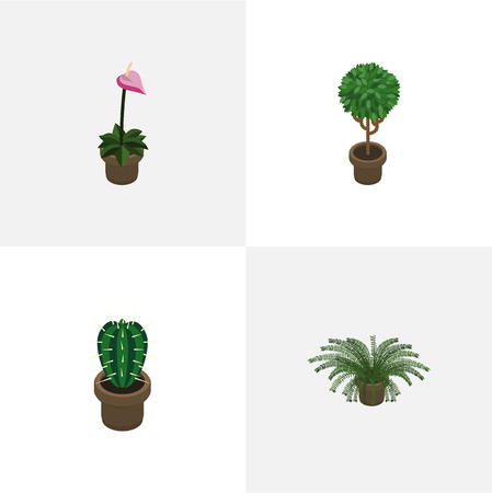 Isometric Houseplant Set Of Tree, Grower, Peyote And Other Vector Objects. Also Includes Peyote, Flowerpot, Cactus Elements. Illustration