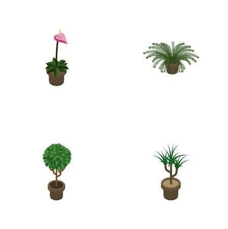 Isometric Houseplant Set Of Tree, Grower, Houseplant And Other Vector Objects. Also Includes Fern, Flowerpot, Pot Elements. Illustration