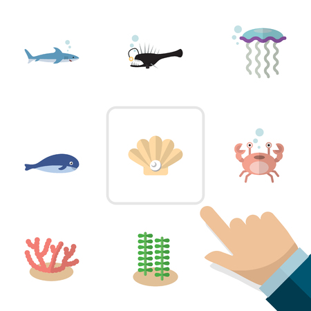 cachalot: Flat Icon Nature Set Of Shark, Cachalot, Medusa And Other Vector Objects. Also Includes Jellyfish, Coral, Pearl Elements.