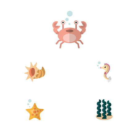 Flat Icon Marine Set Of Seashell, Cancer, Alga And Other Vector Objects. Also Includes Seashell, Hippocampus, Cancer Elements. Stock Vector - 81568613