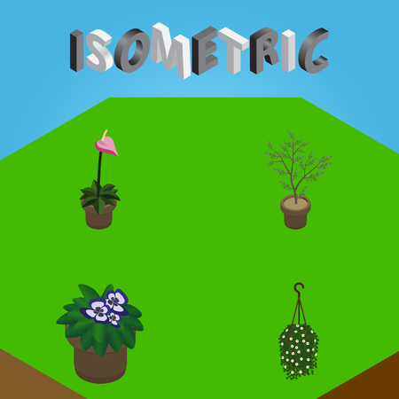 Isometric Flower Set Of Flowerpot, Grower, Blossom And Other Vector Objects. Also Includes Blossom, Houseplant, Hanging Elements. Illustration
