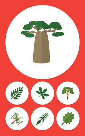 alder: Flat Icon Natural Set Of Alder, Wood, Acacia Leaf And Other Vector Objects. Also Includes Oak, Maple, Alder Elements.