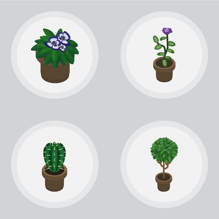 peyote: Isometric Flower Set Of Tree, Flower, Peyote And Other Vector Objects. Also Includes Cactus, Plant, Peyote Elements. Illustration