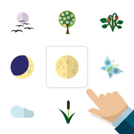 Flat Icon Ecology Set Of Cattail, Lunar, Half Moon And Other Vector Objects. Also Includes Butterfly, Cloud, Sky Elements.