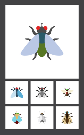 Flat Icon Housefly Set Of Bluebottle, Hum, Mosquito And Other Vector Objects. Also Includes Hum, Dung, Gnat Elements.