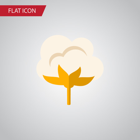cotton bud: Isolated Cotton Flat Icon. Flower Vector Element Can Be Used For Cotton, Flower, Organic Design Concept.