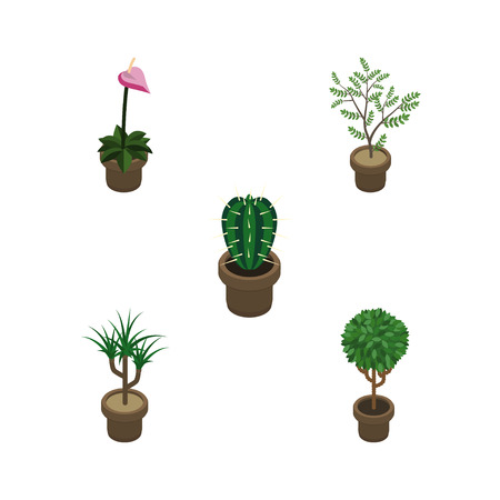 Isometric Plant Set Of Tree, Fern, Peyote And Other Vector Objects. Also Includes Houseplant, Plant, Flowerpot Elements.