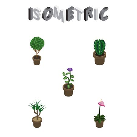 peyote: Isometric Flower Set Of Flower, Grower, Houseplant And Other Vector Objects. Also Includes Peyote, Cactus, Botany Elements. Illustration