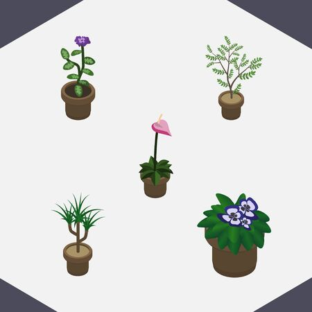 Isometric Flower Set Of Flower, Houseplant, Grower And Other Vector Objects. Also Includes Botany, Flower, Pot Elements. Illustration