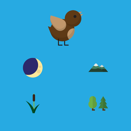 Flat Icon Ecology Set Of Bird, Cattail, Forest And Other Vector Objects. Also Includes Tree, Moon, Pinnacle Elements. Illustration