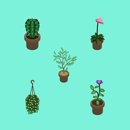 Isometric Plant Set Of Fern, Peyote, Blossom And Other Vector Objects. Also Includes Plant, Cactus, Flower Elements.