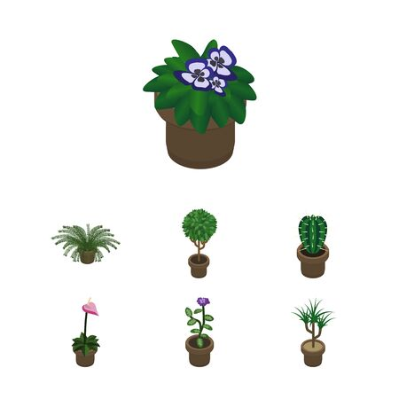Isometric Flower Set Of Houseplant, Peyote, Flowerpot And Other Vector Objects. Also Includes Pot, Plant, Peyote Elements.