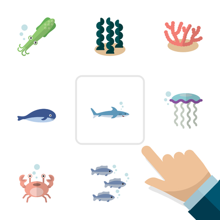 Flat Icon Marine Set Of Octopus, Medusa, Algae And Other Vector Objects. Also Includes Whale, Algae, Humpback Elements. Illustration